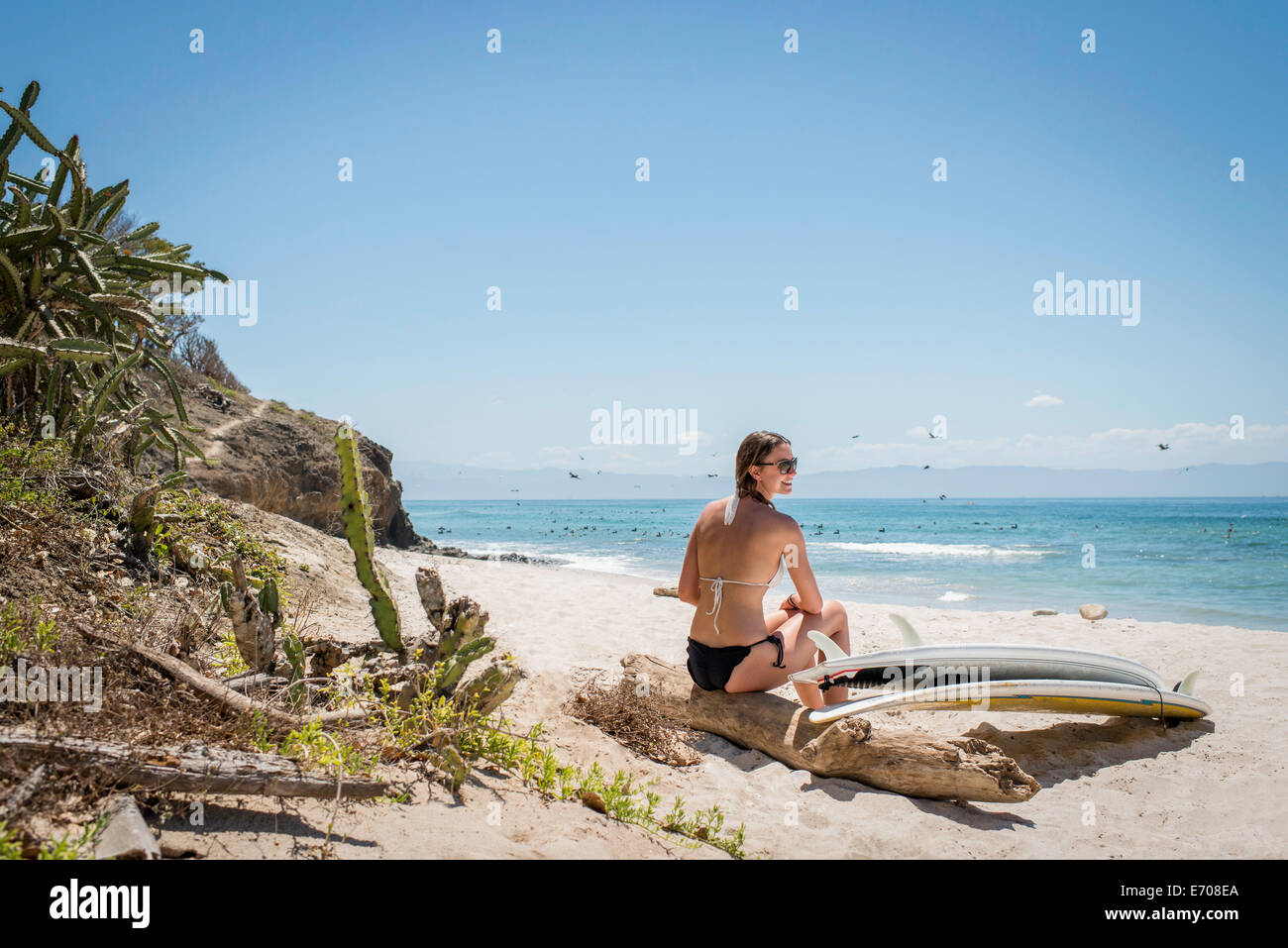 Young woman sitting on driftwood at beach, surfboard by her side - Stock Image