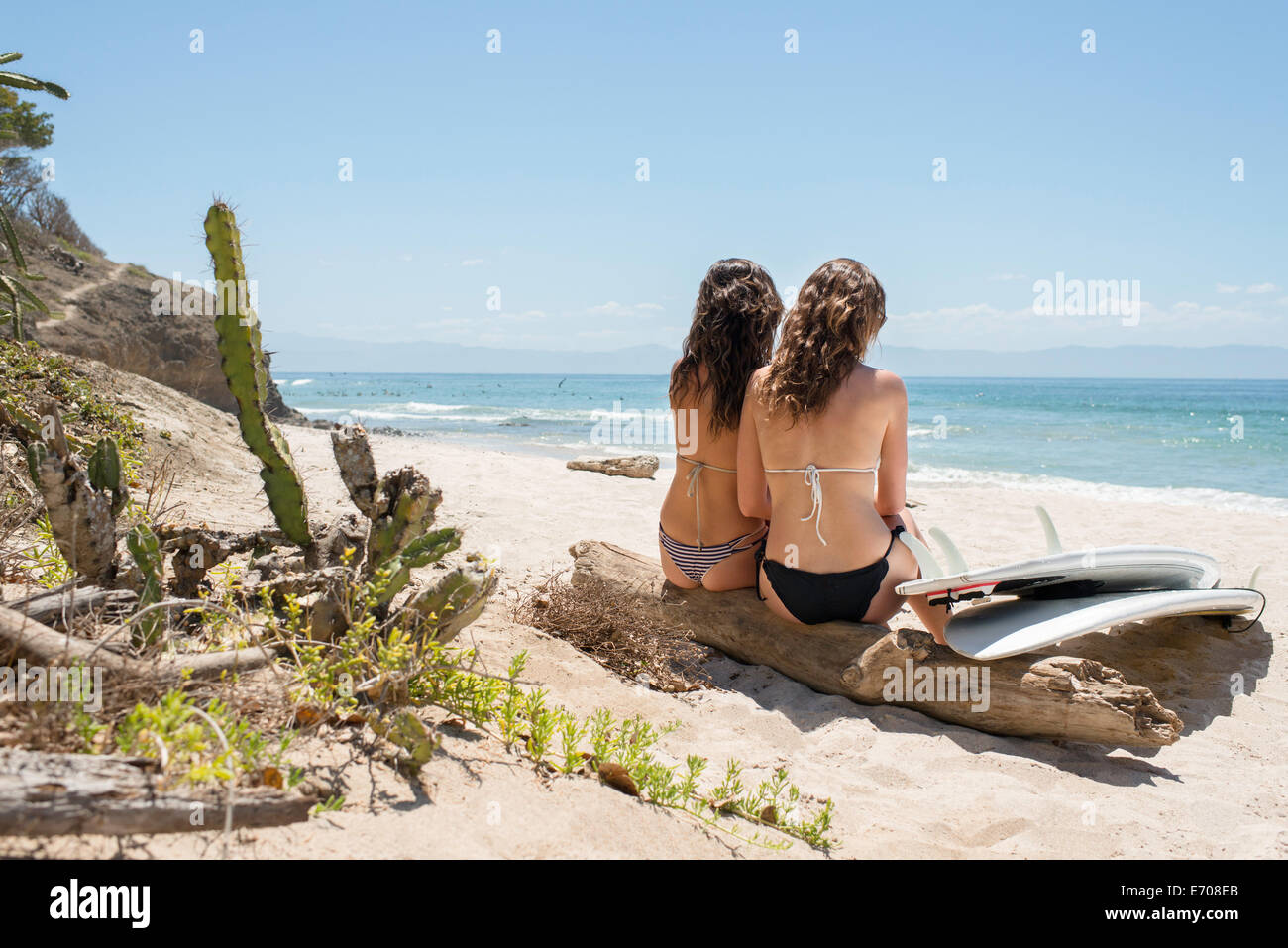 Two young woman sitting on driftwood at beach, surfboard closeby - Stock Image