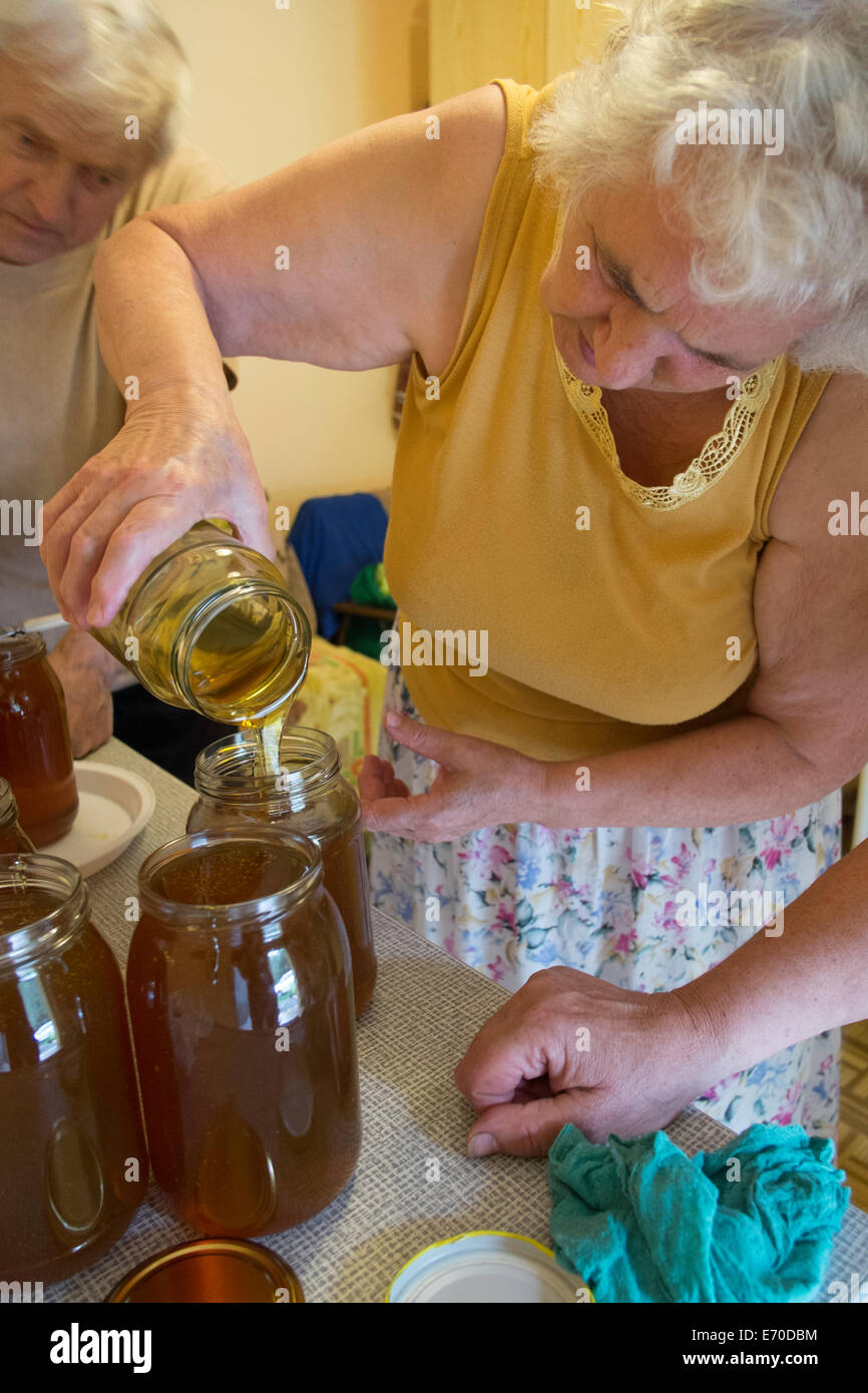 Small family run apiary, Honey is being distributed into jars, Osiny, Poland - Stock Image