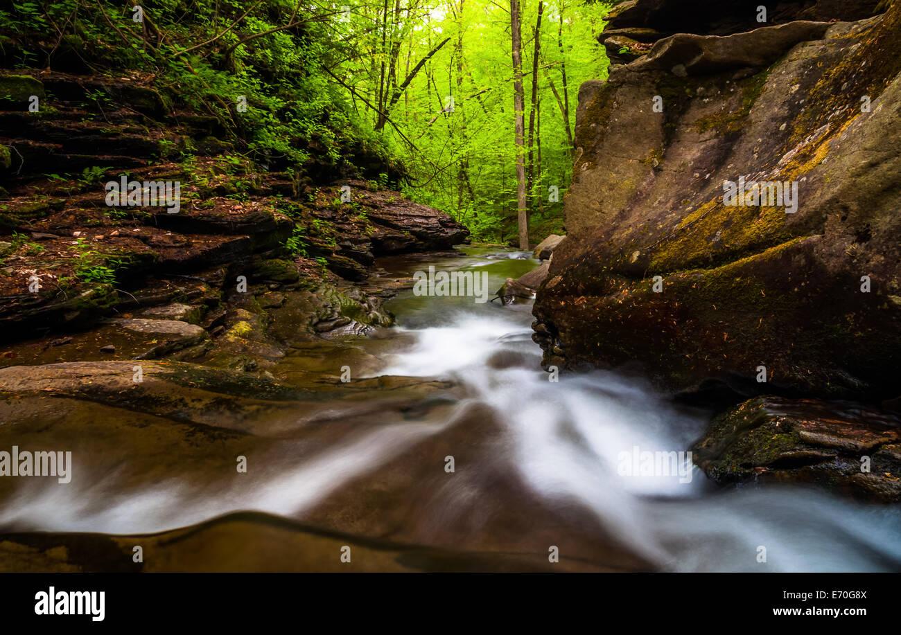 Kitchen Creek Falls California