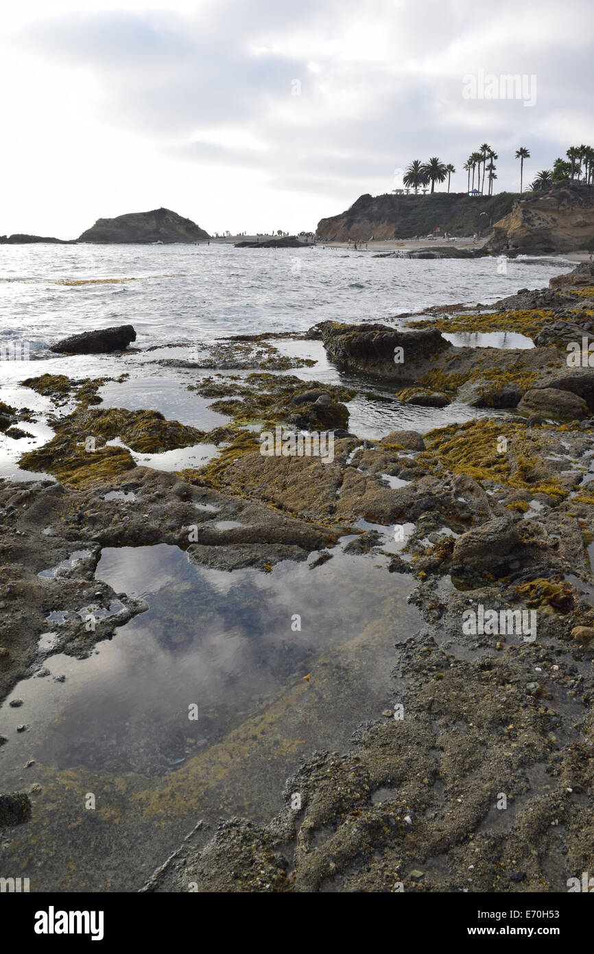 Laguna Tide Pools Stock Photo