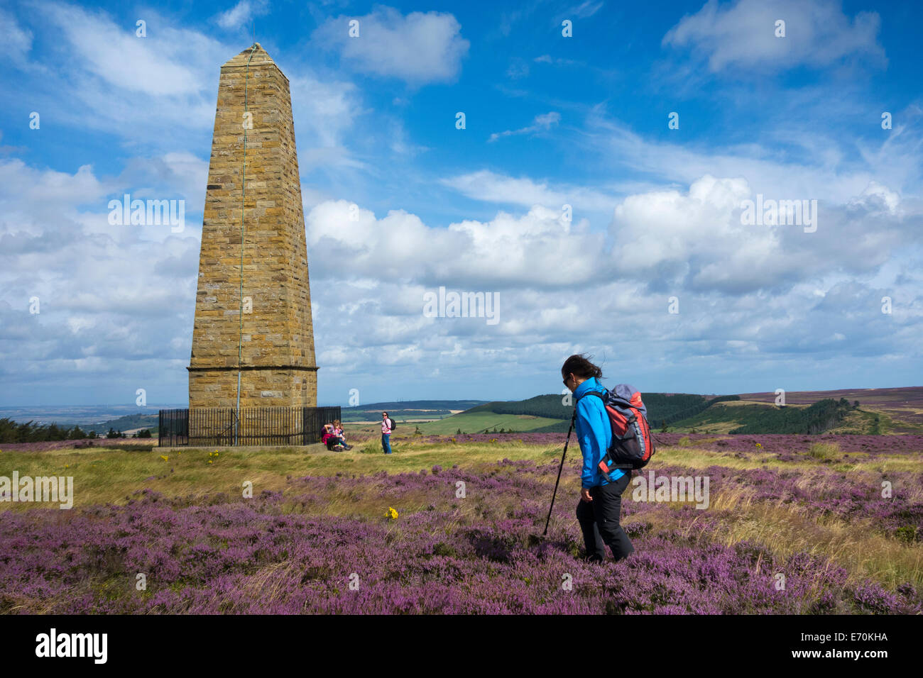 Female walker near Captain Cook`s monument on The Cleveland Way National Trail, North York Moors National Park, - Stock Image