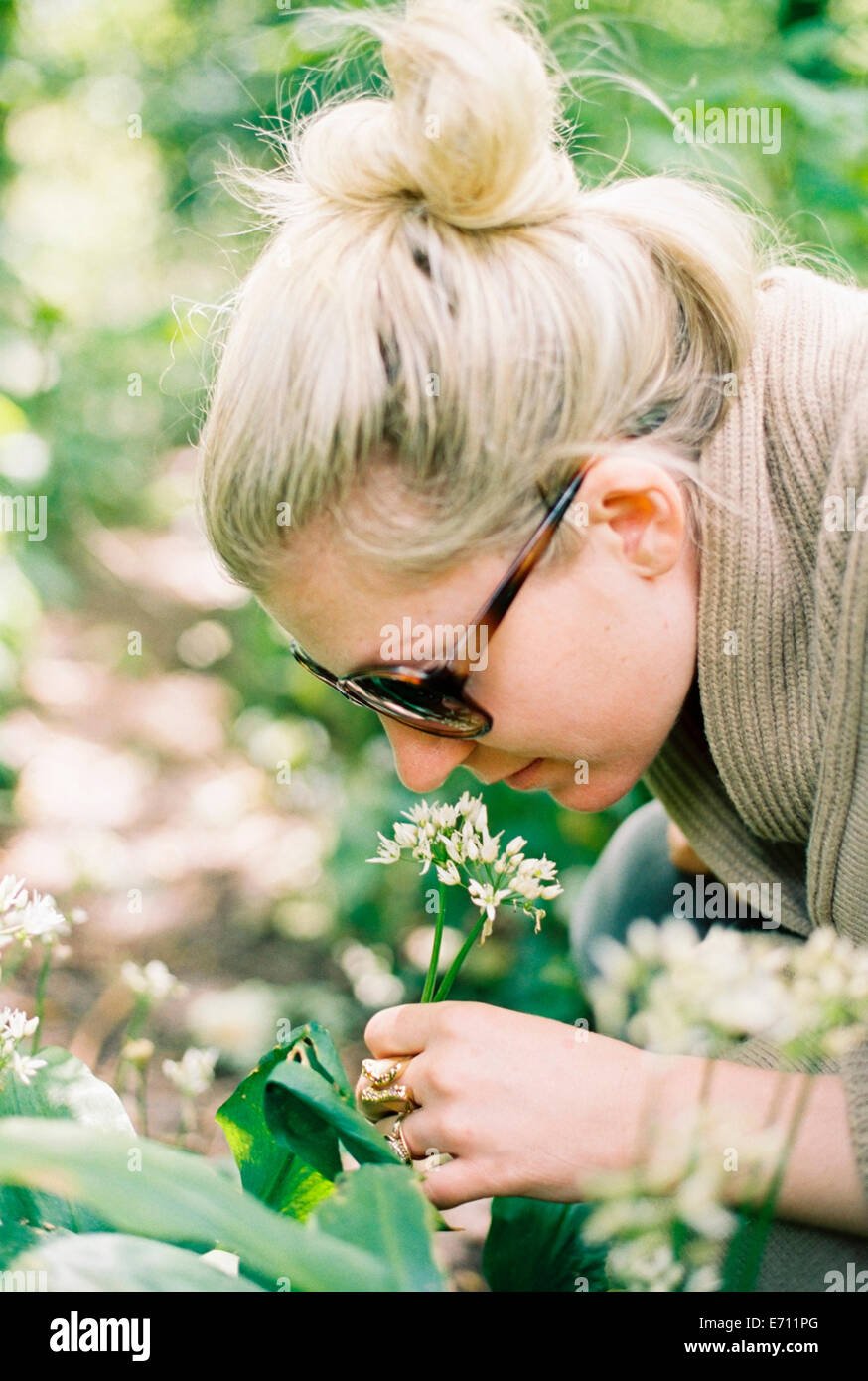 A woman leaning down to examine a flowerhead. - Stock Image