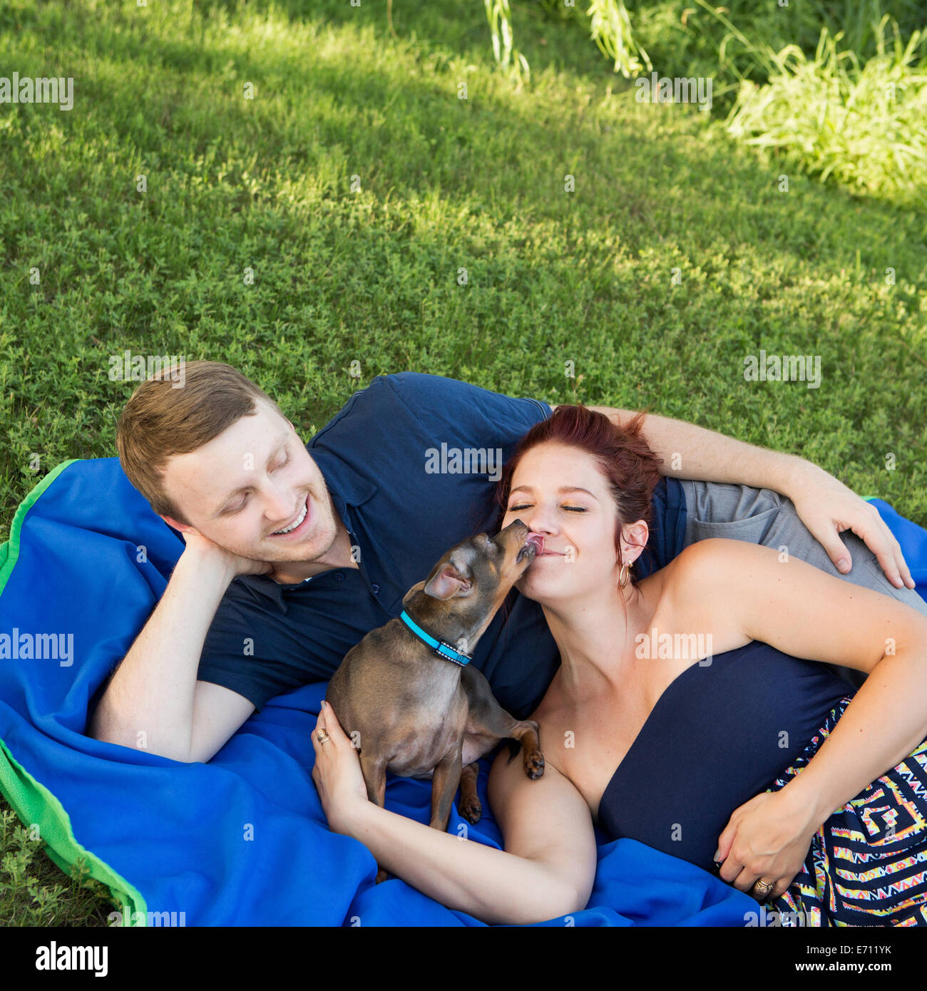 A couple sitting on a picnic rug. A small dog licking the face of a woman. - Stock Image