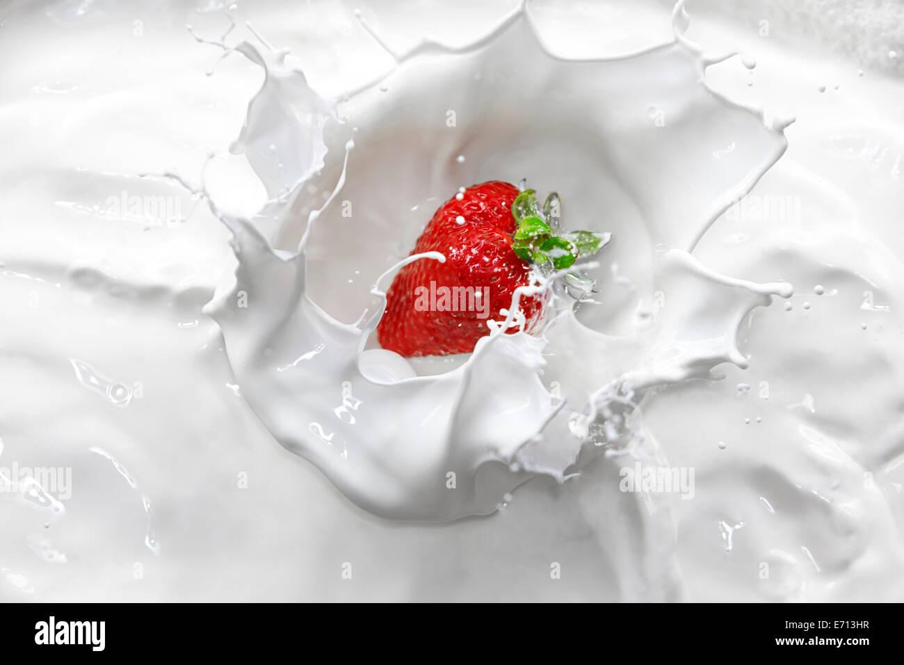 Strawberry splashing into cream - Stock Image