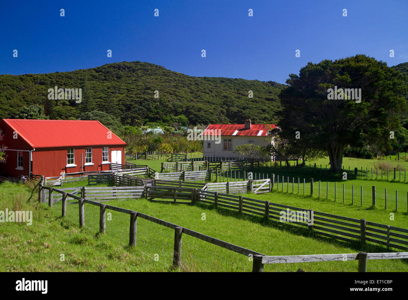 Old farmstead at the Bay of Islands in the Northland Region, North Island, New Zealand. - Stock Image