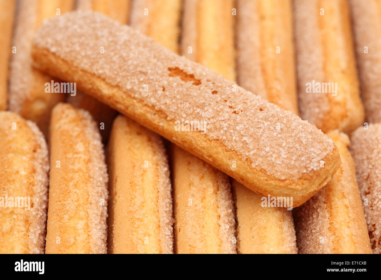 Biscuits closeup. - Stock Image