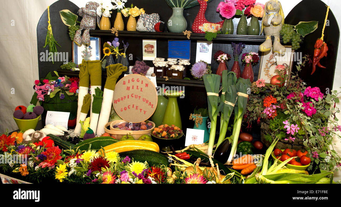 An entry from the Biggin Hill Horticultural Society takes second prize at the Edenbridge and Oxted Agricultural - Stock Image