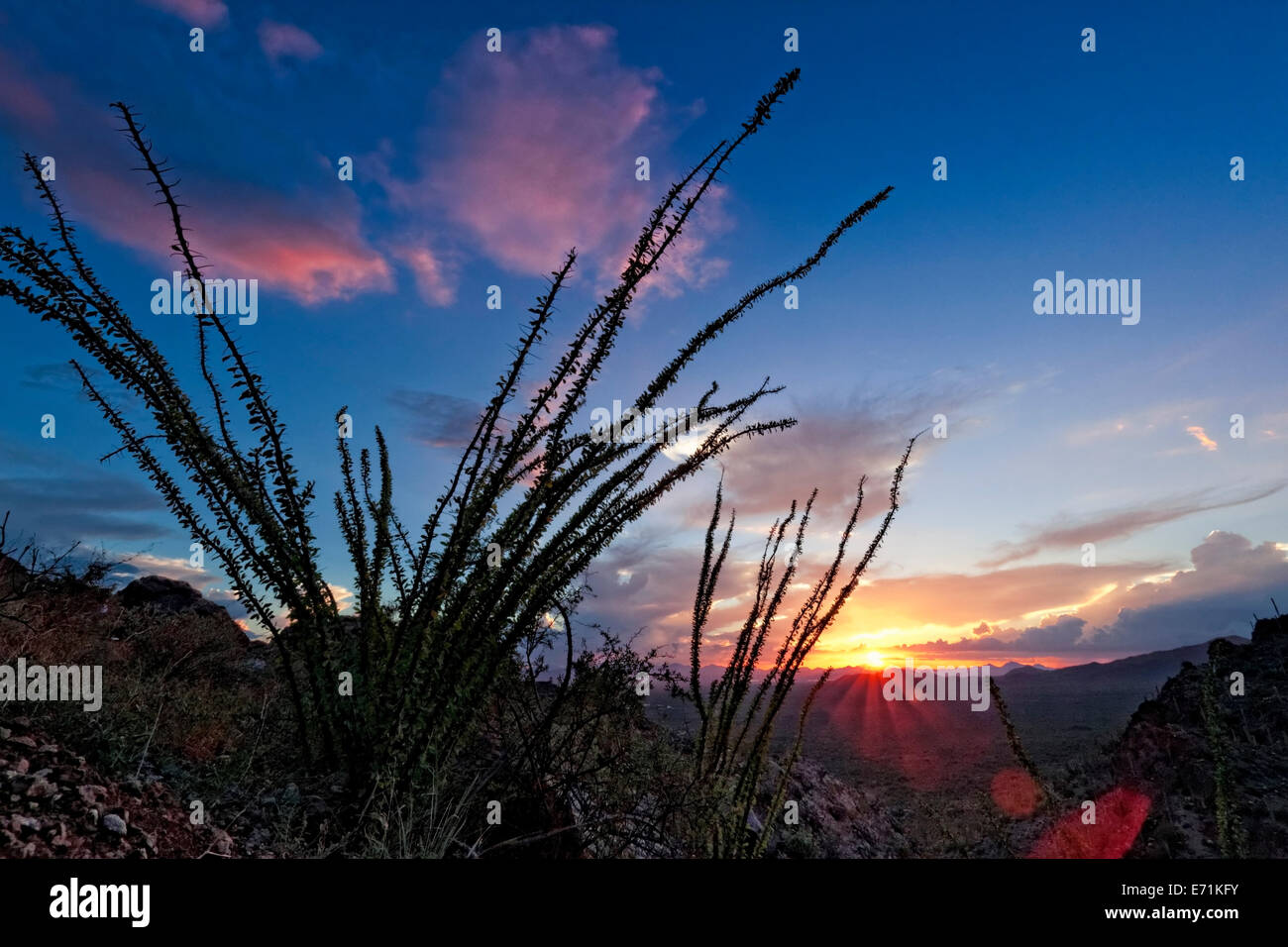 Sundown at Gates Pass, Saguaro NP, Arizona - Stock Image