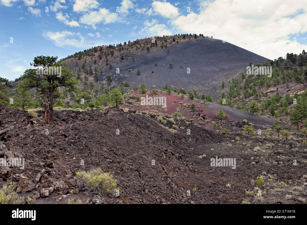 Sunset Crater National Monument is located north of Flagstaff in Northern Arizona - Stock Image