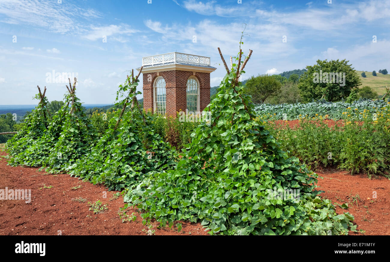 Vegetable Garden At The Thomas Jeffersonu0027s Home   Monticello, VA   Stock  Image