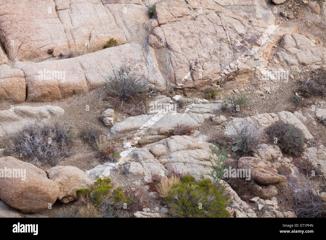 Unique monzogranite rock formations with aplite vein - USA - Stock Image