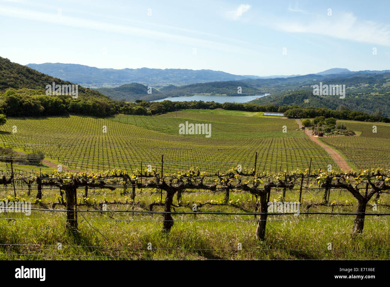 Lake Hennessey viewed from Continuum Estate, Napa Valley, California, USA - Stock Image