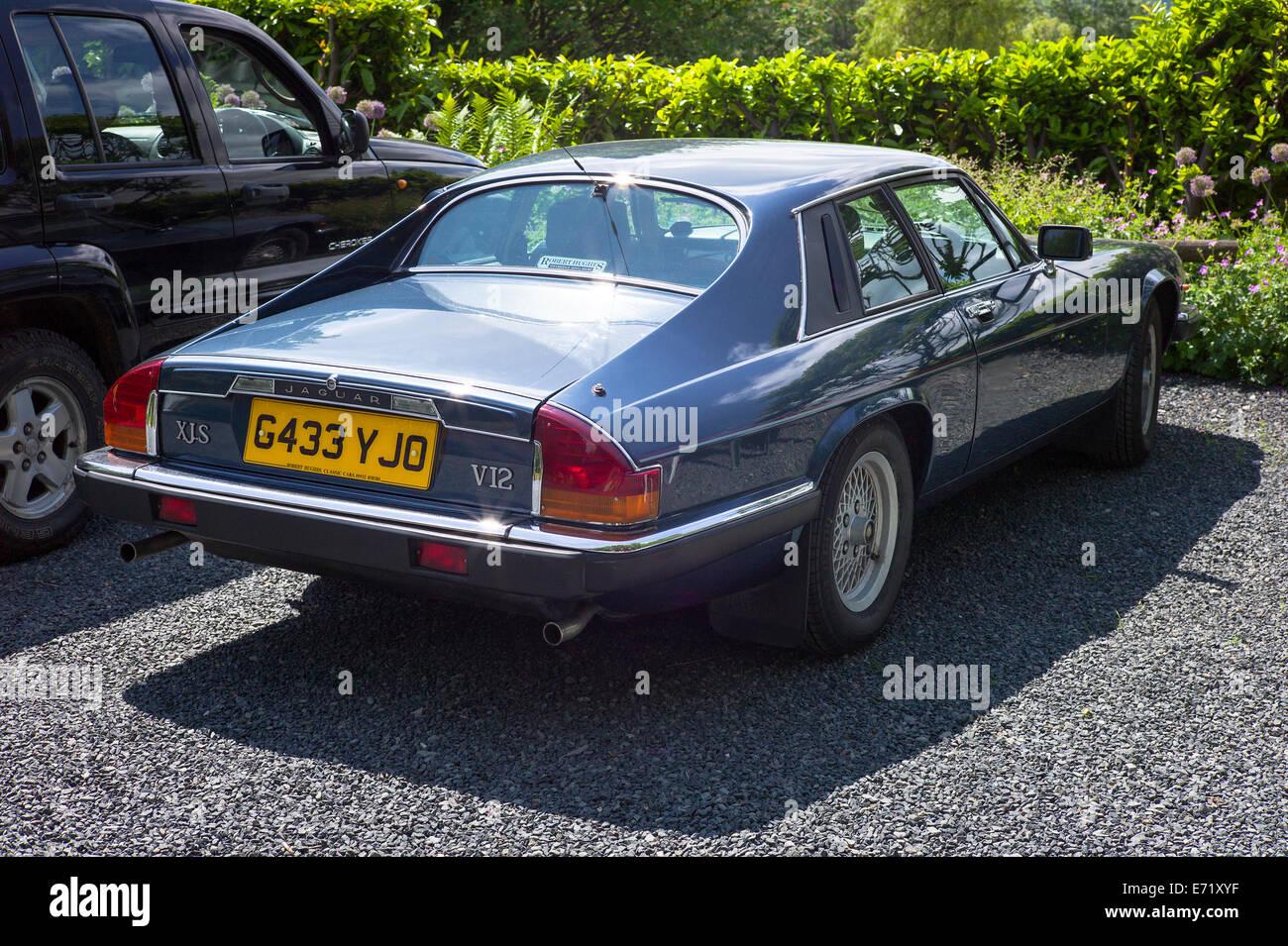 Sleek Lines Of An Old Jaguar XJS Car   Stock Image