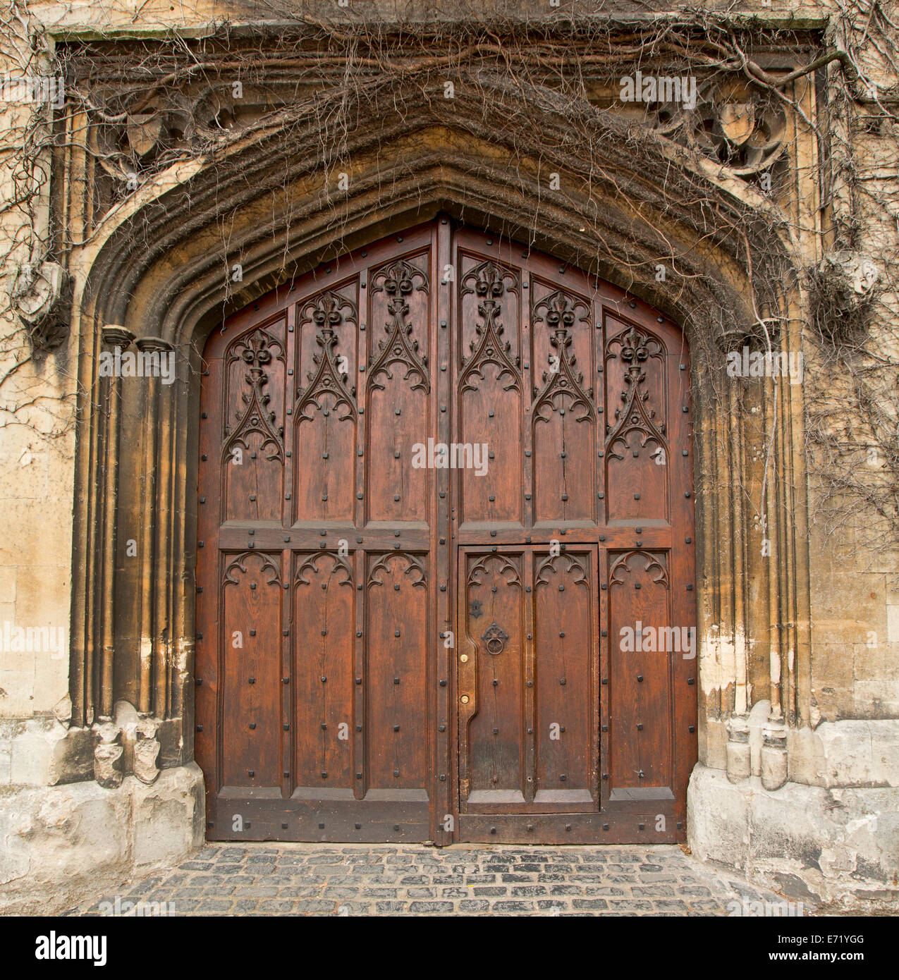 Spectacular rich brown double wooden doors with intricate carving ...