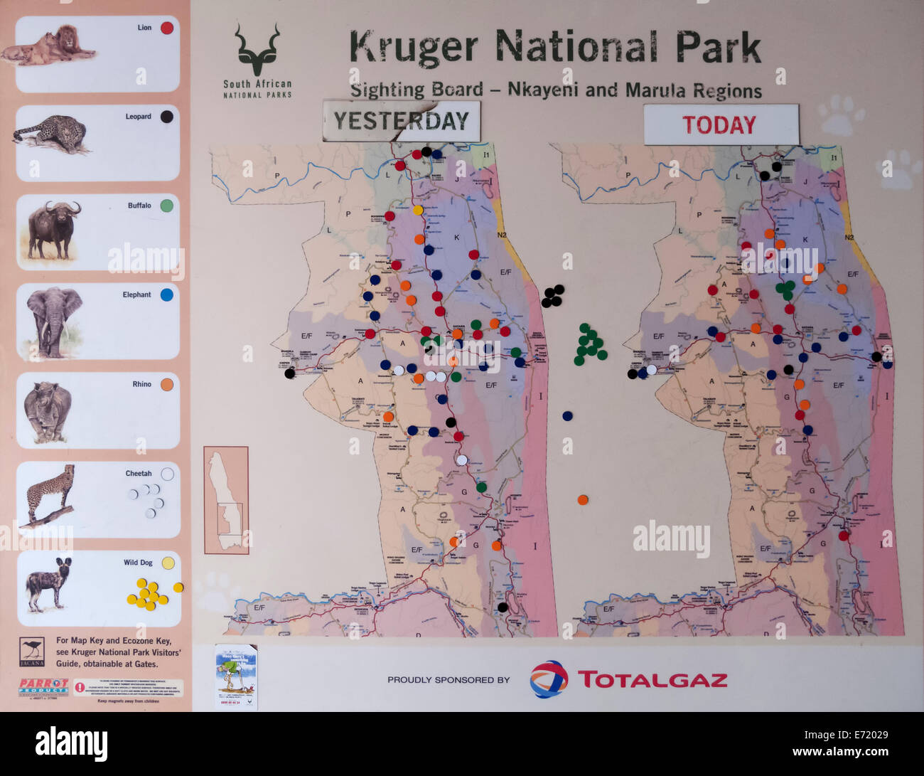 Sighting board in the Satara Camp, Kruger National Park, South Africa - Stock Image