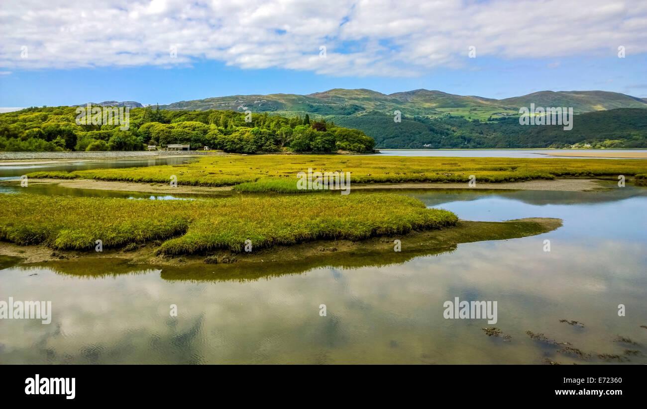 mawddach trail estuary of the afon mawddach gwynedd north wales - Stock Image