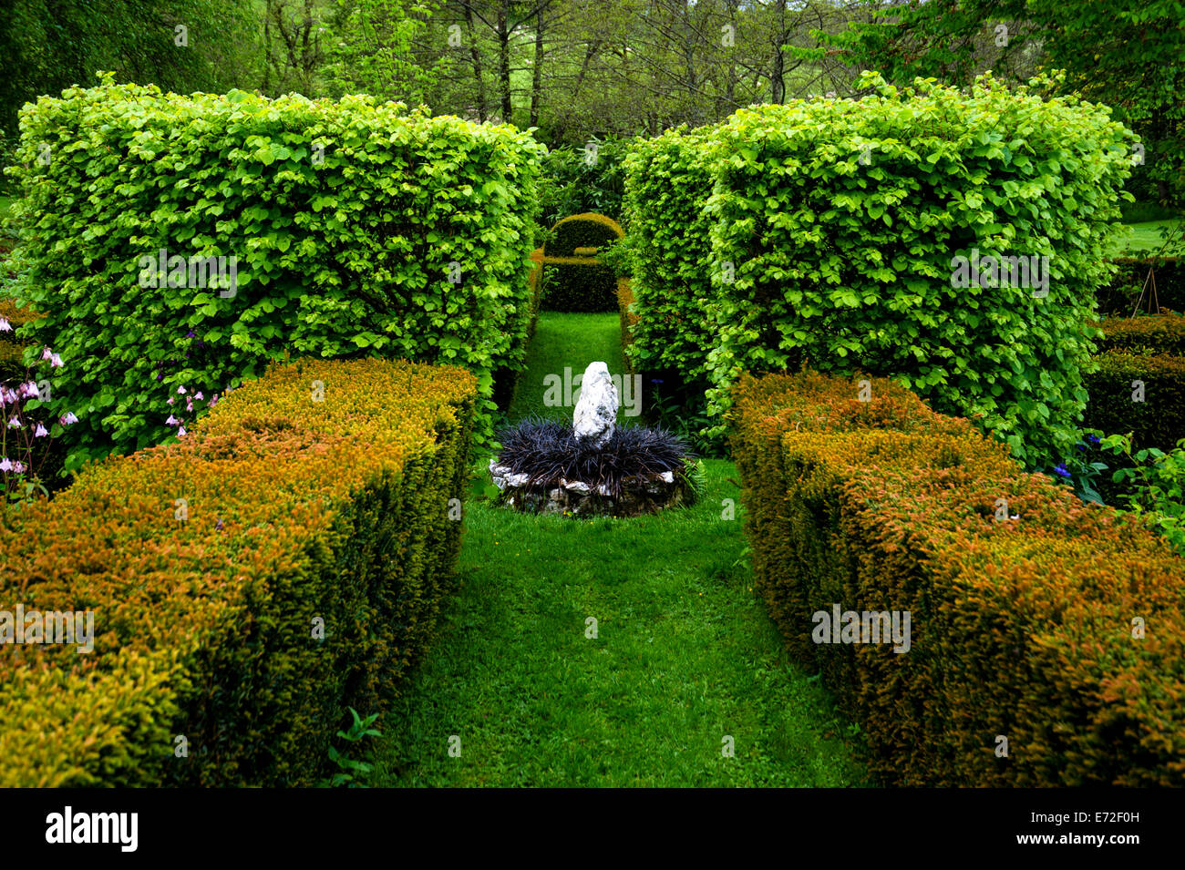 The Lower Garden with formal hedging, Cae Hir Garden,Ceredigion,Wales - Stock Image