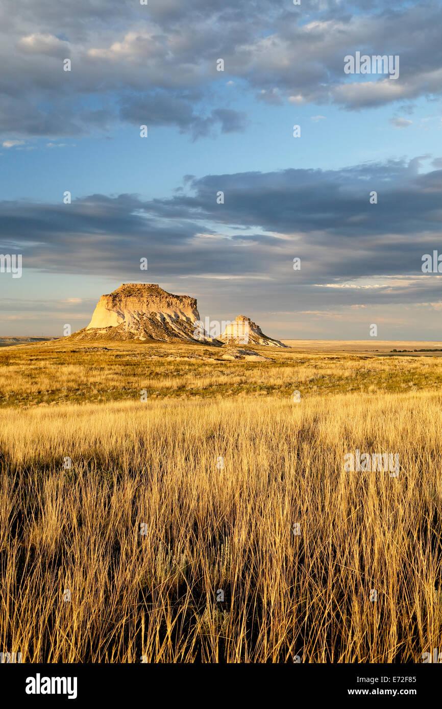 Grasses and Pawnee Buttes, Pawnee National Grassland, Colorado USA Stock Photo