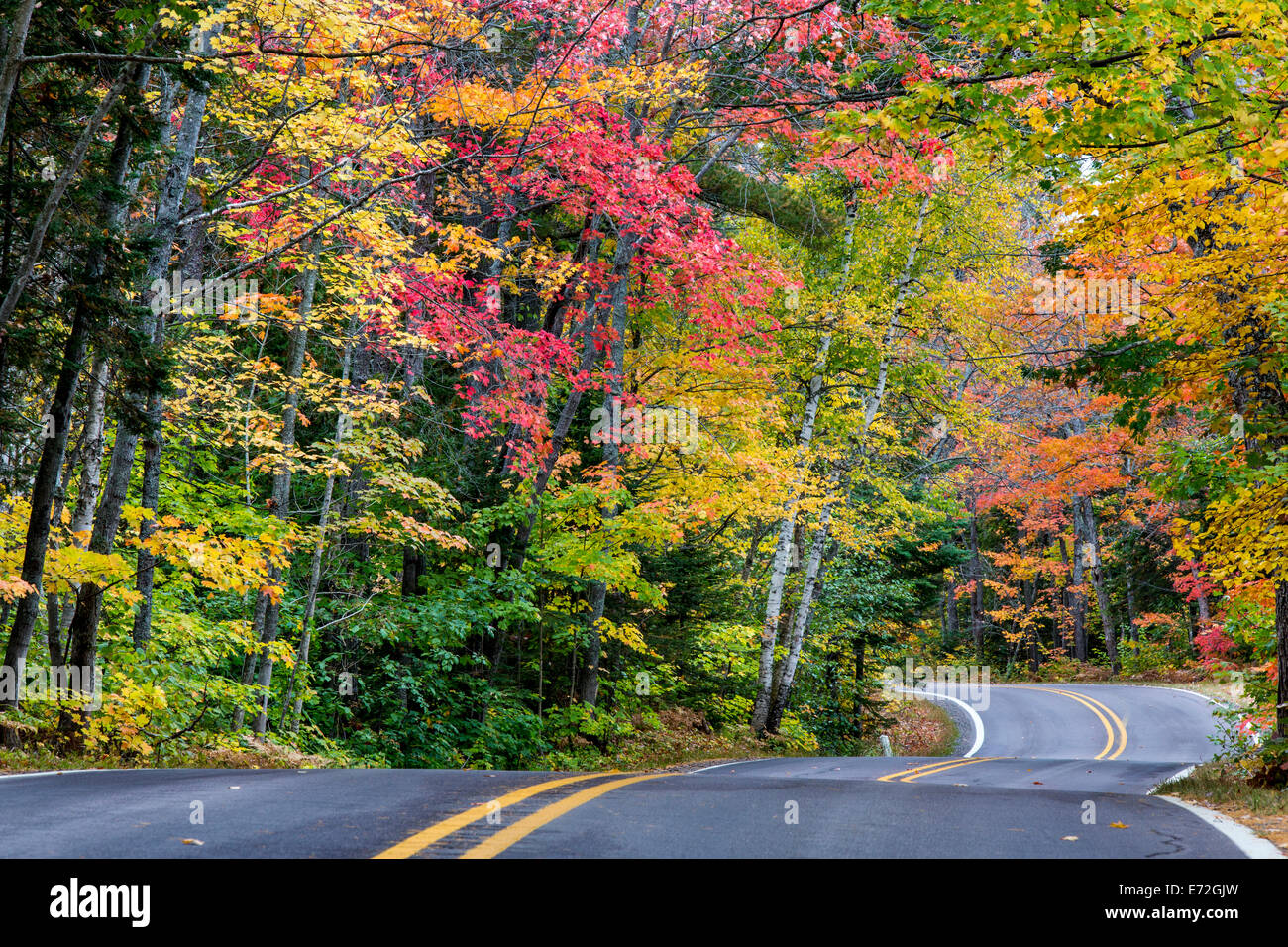 Tunnel Of Trees Michigan Stock Photos & Tunnel Of Trees Michigan ...