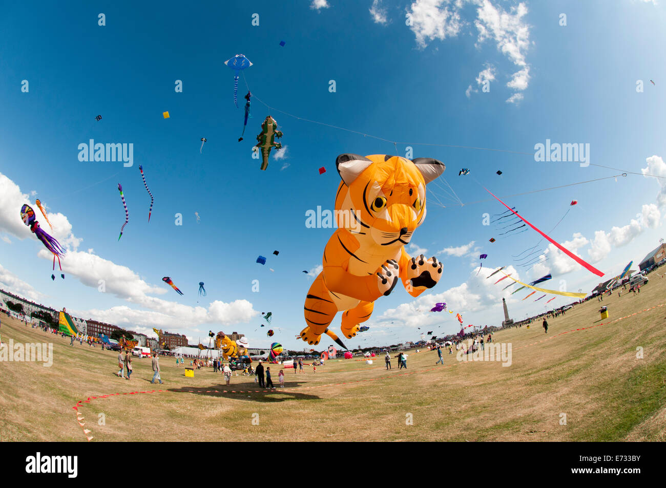 Portsmouth International Kite Festival, tiger kite Stock Photo