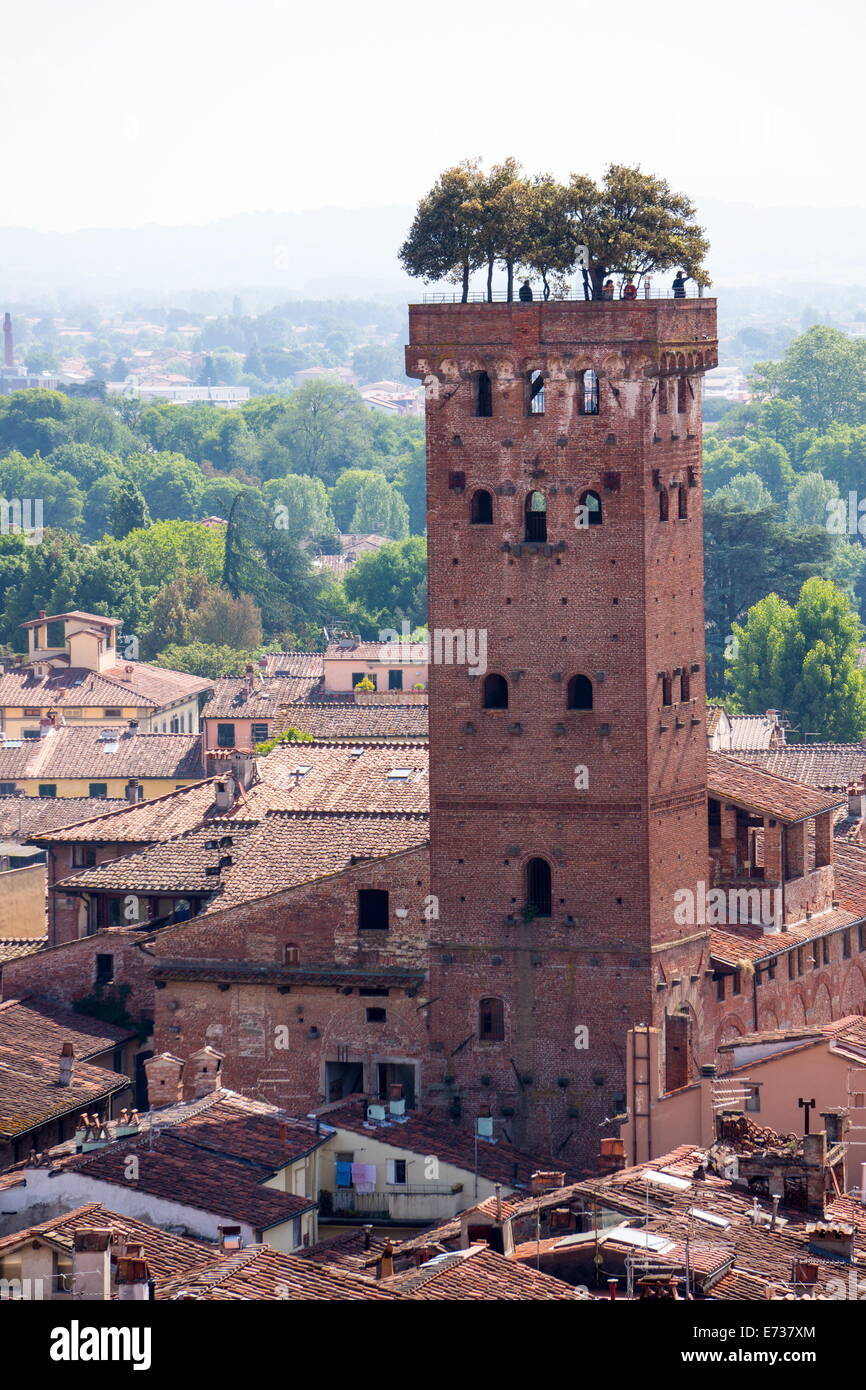 Torre Guinigi as seen from Torre delle Ore, Lucca, Tuscany, Italy, Europe - Stock Image