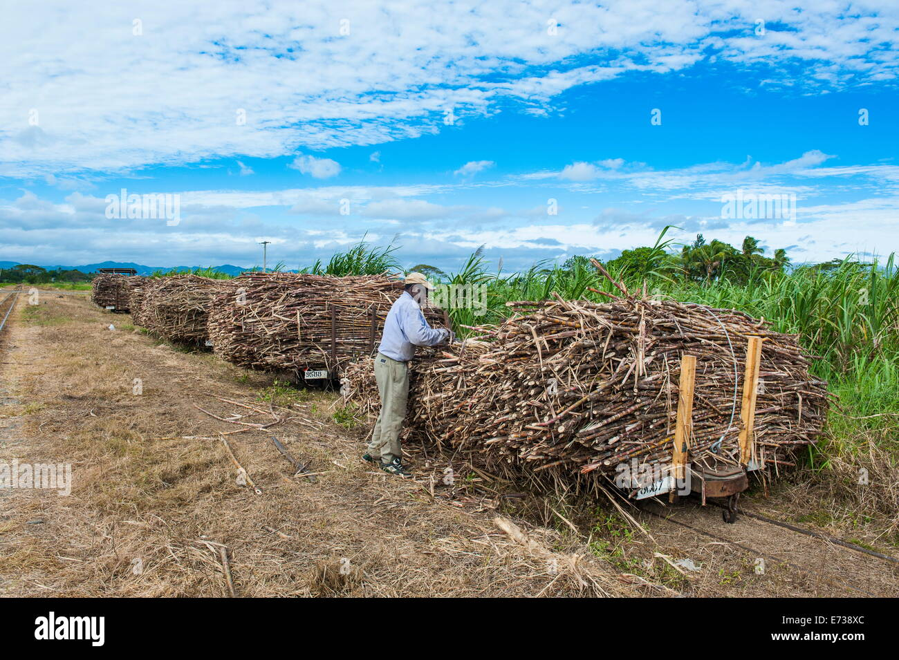 Sugar cane train, Coral Coast, Fiji, South Pacific, Pacific - Stock Image