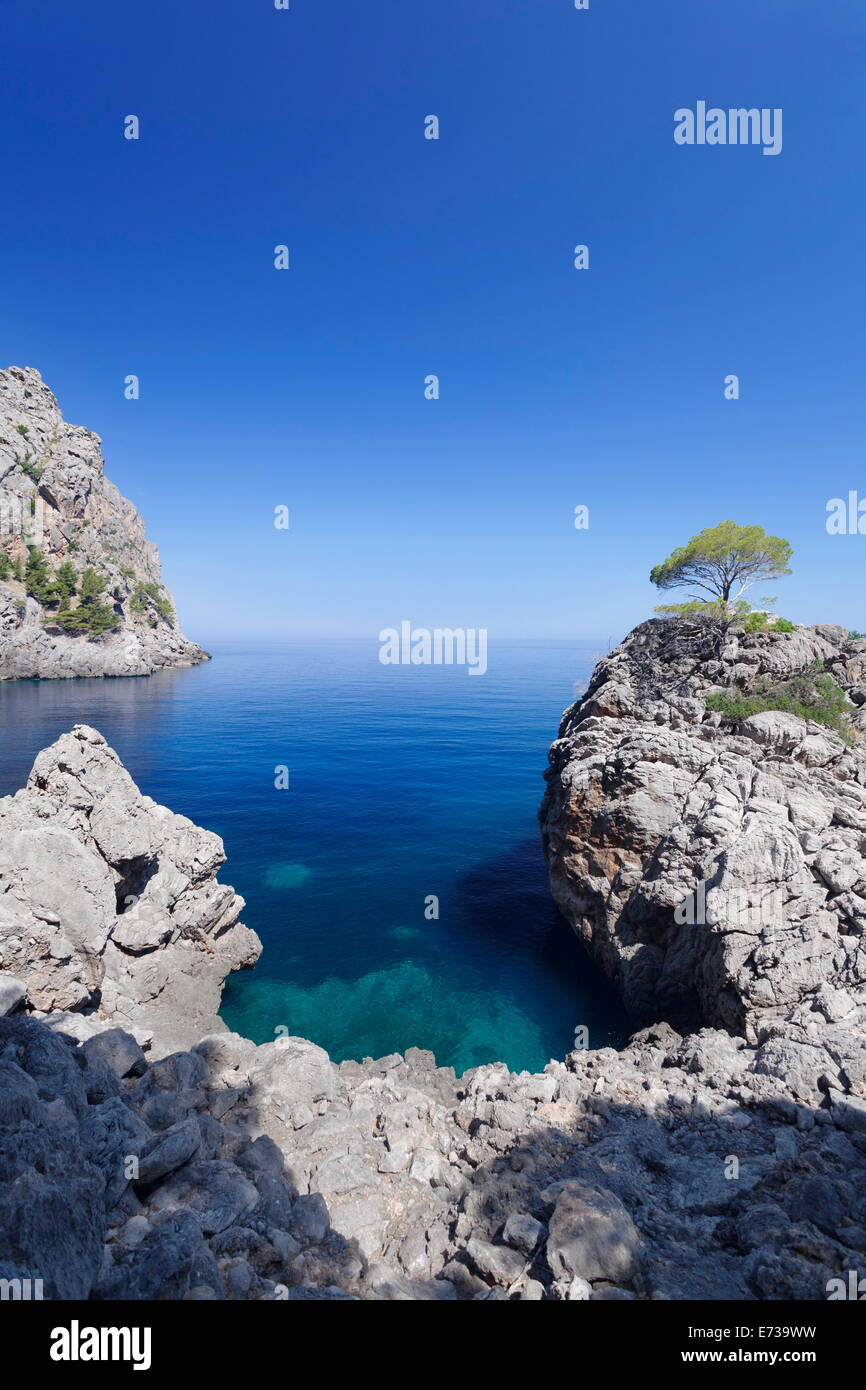 Bay Cala de Sa Calobra, Majorca (Mallorca), Balearic Islands (Islas Baleares), Spain, Mediterranean, Europe - Stock Image