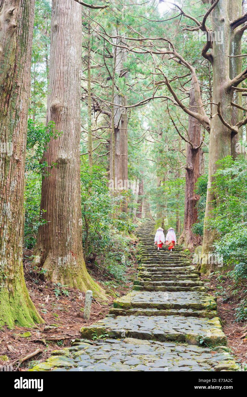 Pilgrims on Daimon-zaka Nachi Tokaido pilgrimage route, UNESCO World Heritage Site, Wakayama Prefecture, Honshu, - Stock Image