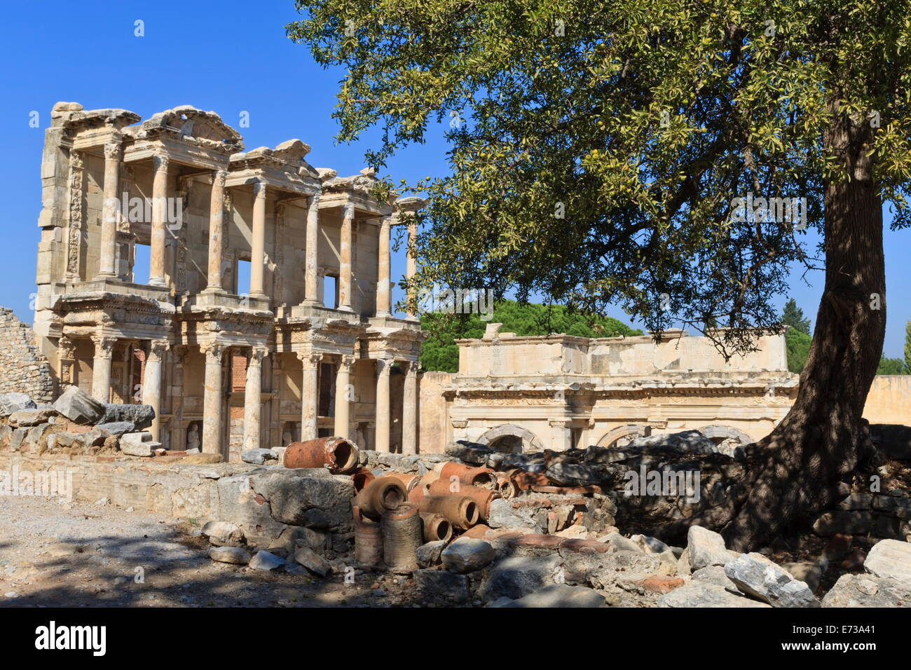 Facade of the Library of Celsus, fruit tree and ancient pipes, ancient Ephesus, Anatolia, Turkey, Asia Minor, Eurasia - Stock Image