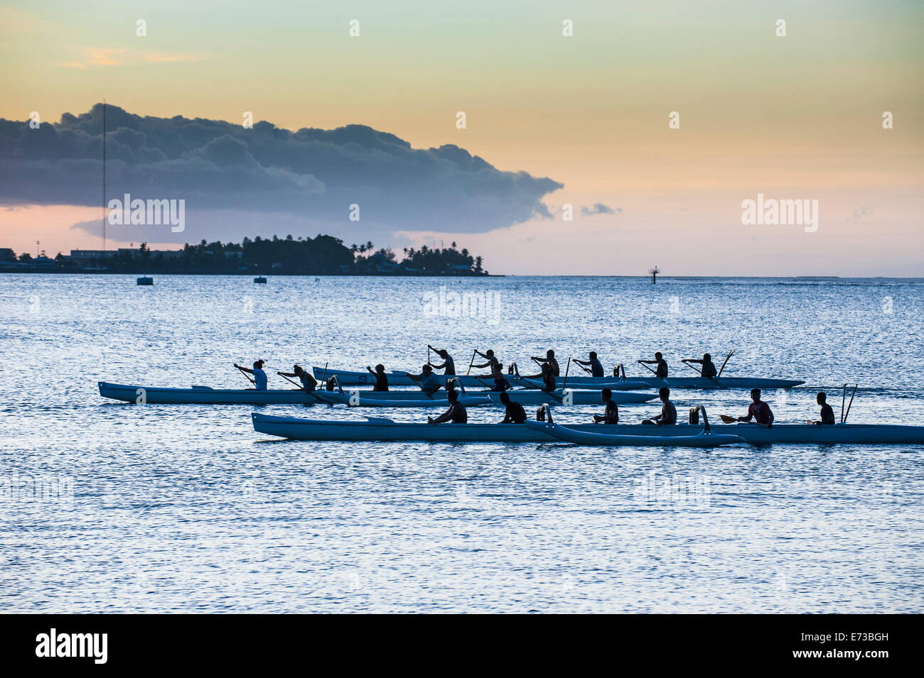 South Island Rowing