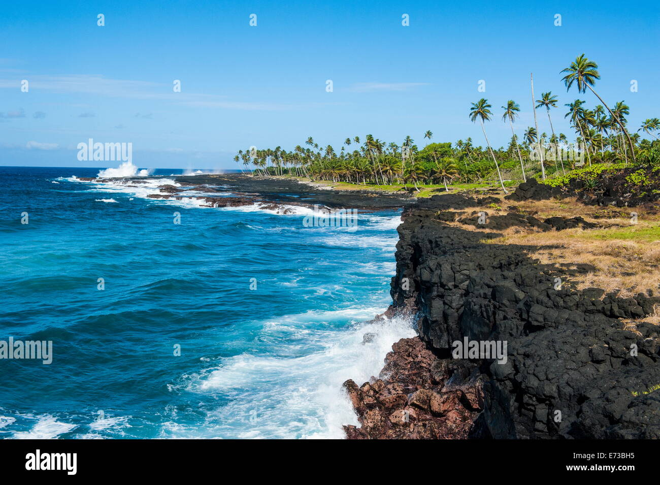 Rocky south coast near the Alofaaga blowholes on the south of Savaii, Samoa, South Pacific, Pacific - Stock Image