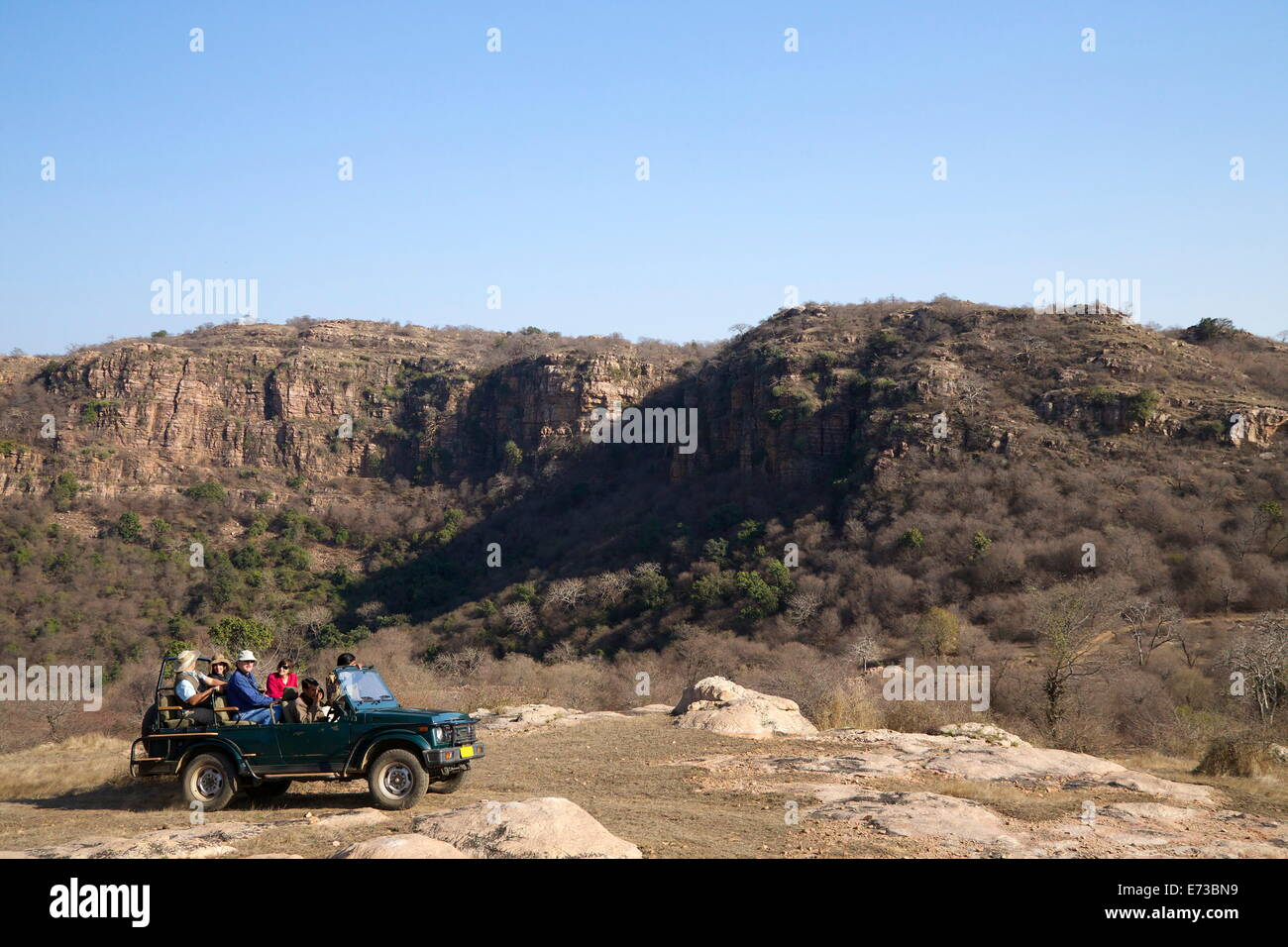 Tourists on safari in open jeep, Ranthambore National Park, Rajasthan, India, Asia - Stock Image
