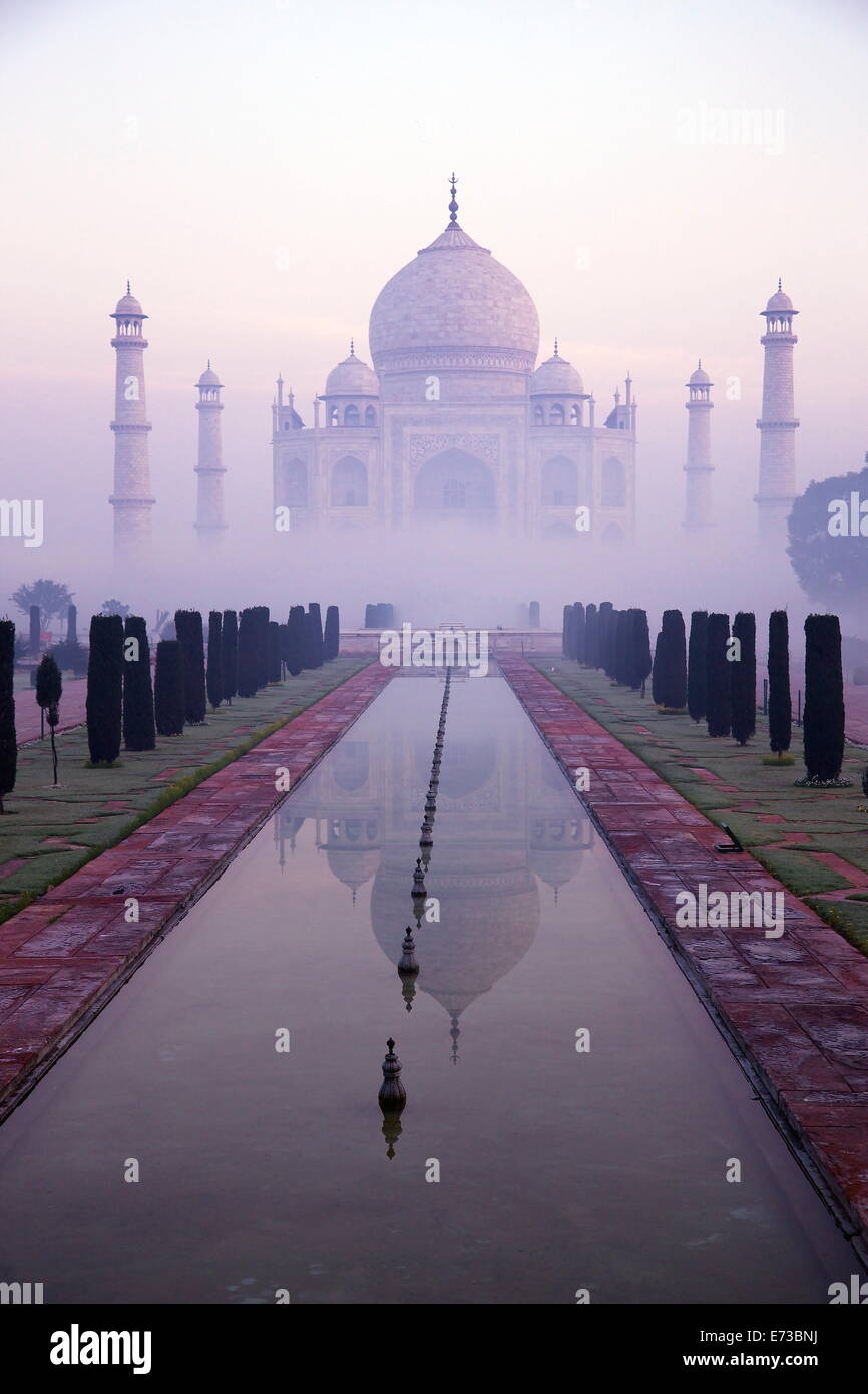 Taj Mahal at dawn, UNESCO World Heritage Site, Agra, Uttar Pradesh, India, Asia - Stock Image