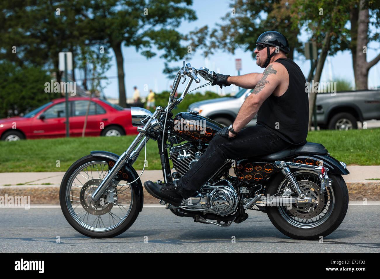 Harley Riders: Harley Davidson Rider Stock Photo: 73221935