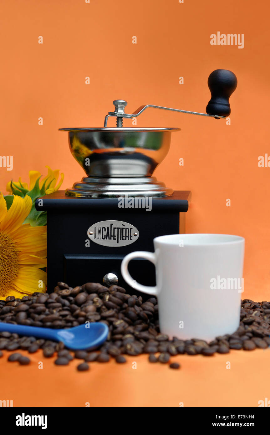 Coffee mill and coffee grains - Stock Image