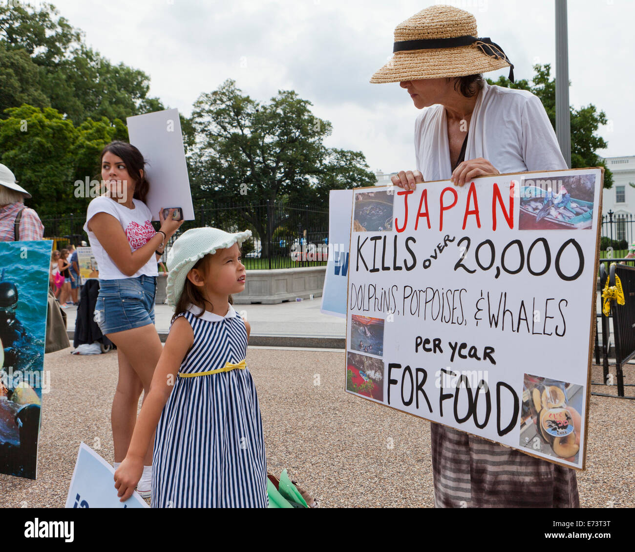 PETA members protesting in front of the White House against Japanese dolphin fishing - Washington, DC USA - Stock Image
