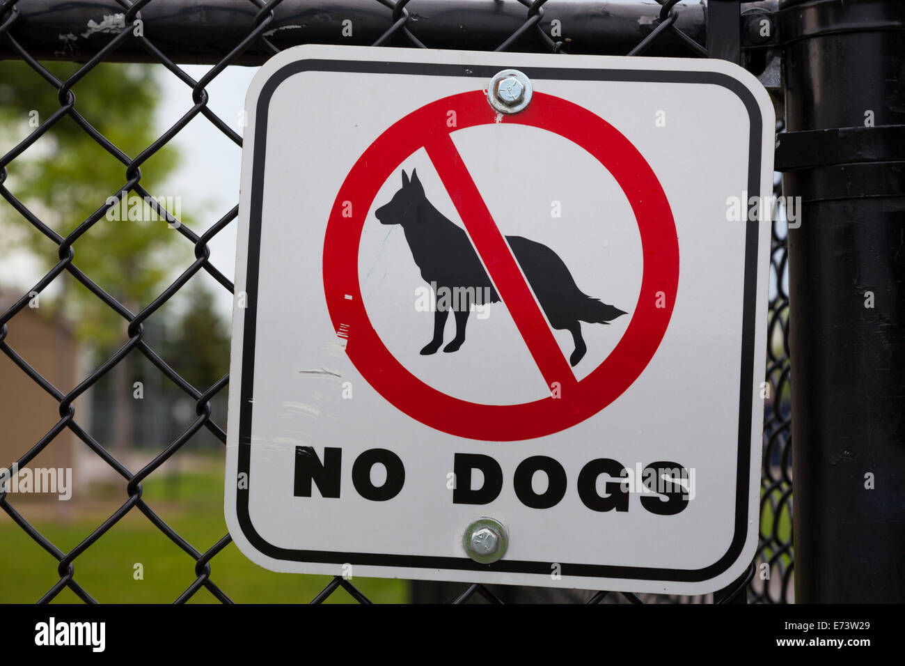 A 'no dogs' sign posted on a fence in a park. Whitby, Ontario, Canada. - Stock Image
