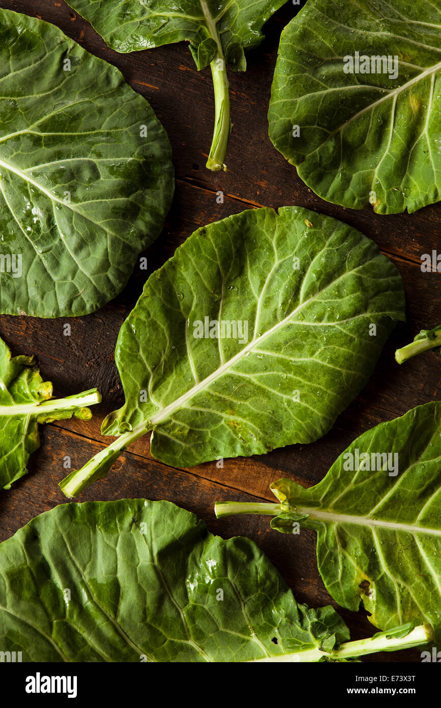 Raw Organic Green Collard Greens on a Background - Stock Image