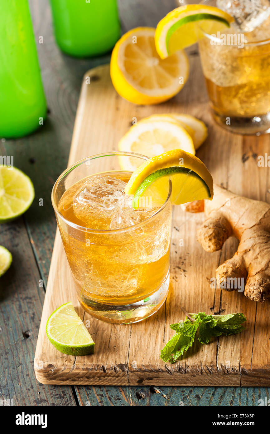 Organic Ginger Ale Soda in a Glass with Lemon and Lime - Stock Image