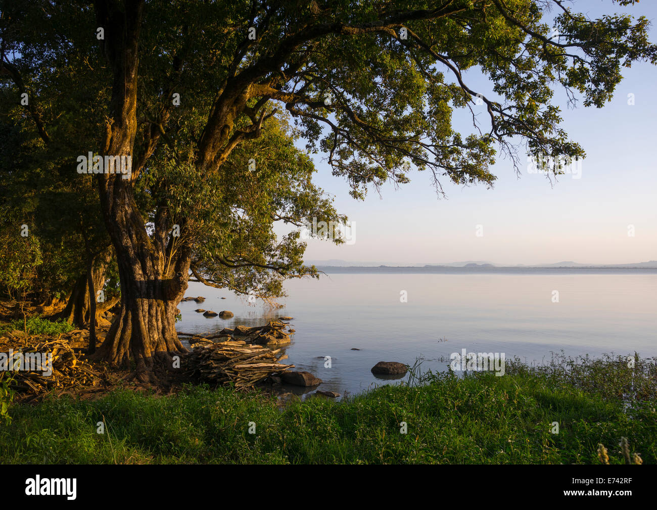 Lake Tana, Bahir Dar, Ethiopia - Stock Image