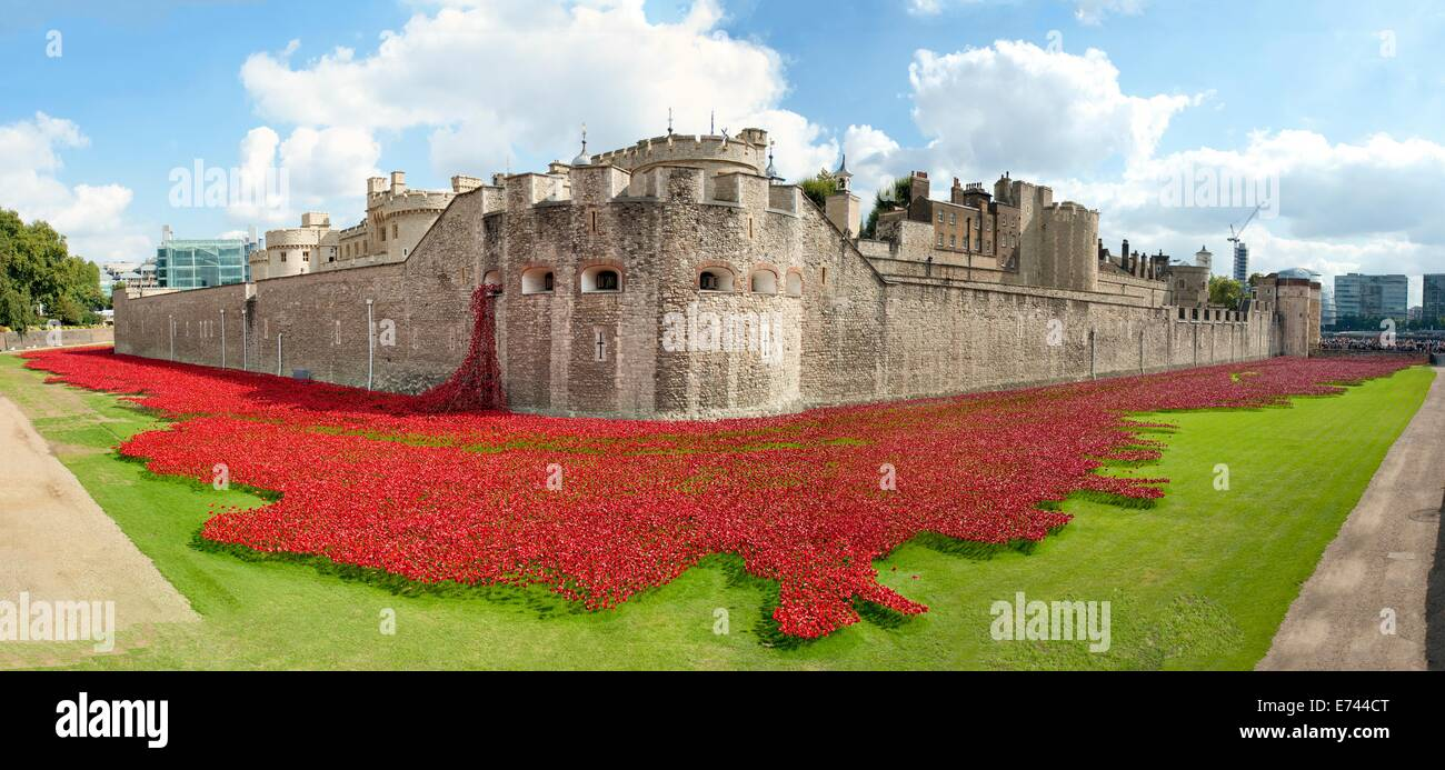 The Tower of London surrounded by ceramic poppies by artist Paul Cummins - Stock Image