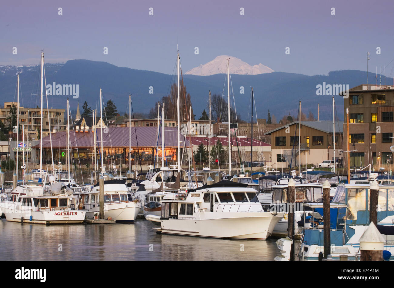 Yachts in the Squalicum Marina at dusk with Mount Baker looming in the backgroun, Bellingham Bay Washington - Stock Image