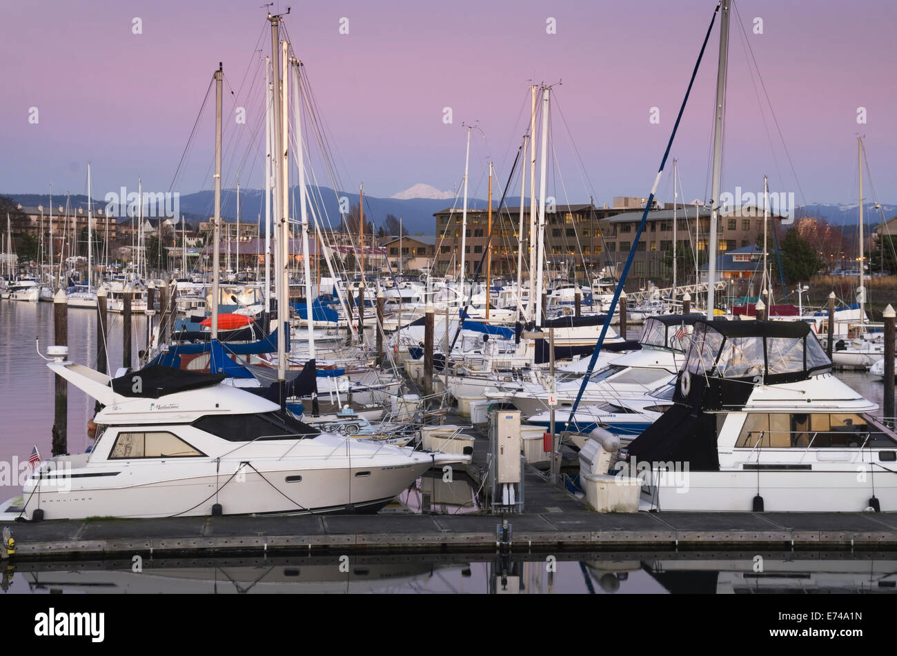Yachts in the Squalicum Marina at dusk with Mount Baker looming in the background, Bellingham Bay Washington - Stock Image