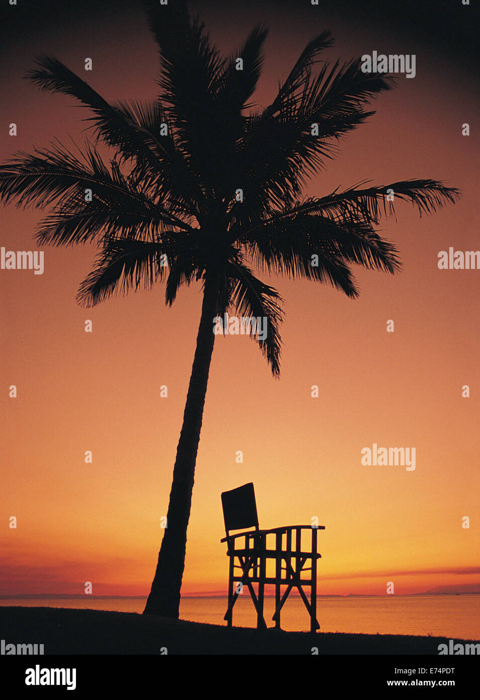 Deck chair under coconut palm in sunset Stock Photo