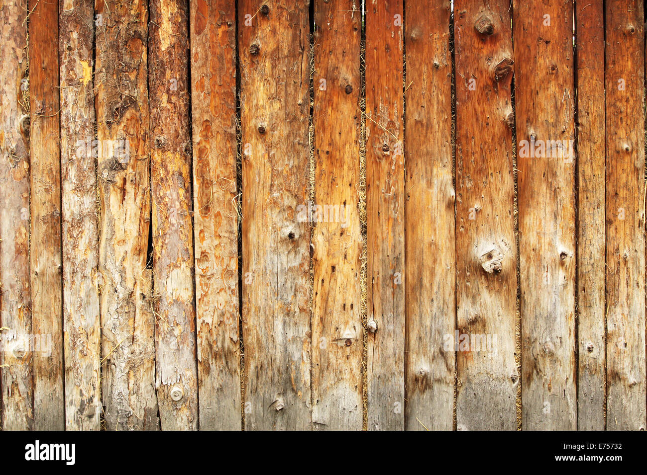 The brown texture whit natural patterns - Stock Image