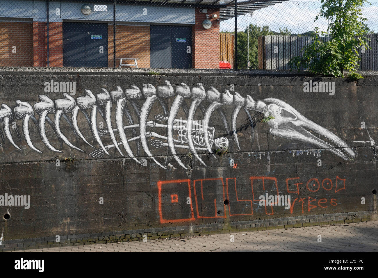 Artwork by Phlegm on a wall, River Sheaf, Sheffield - Stock Image