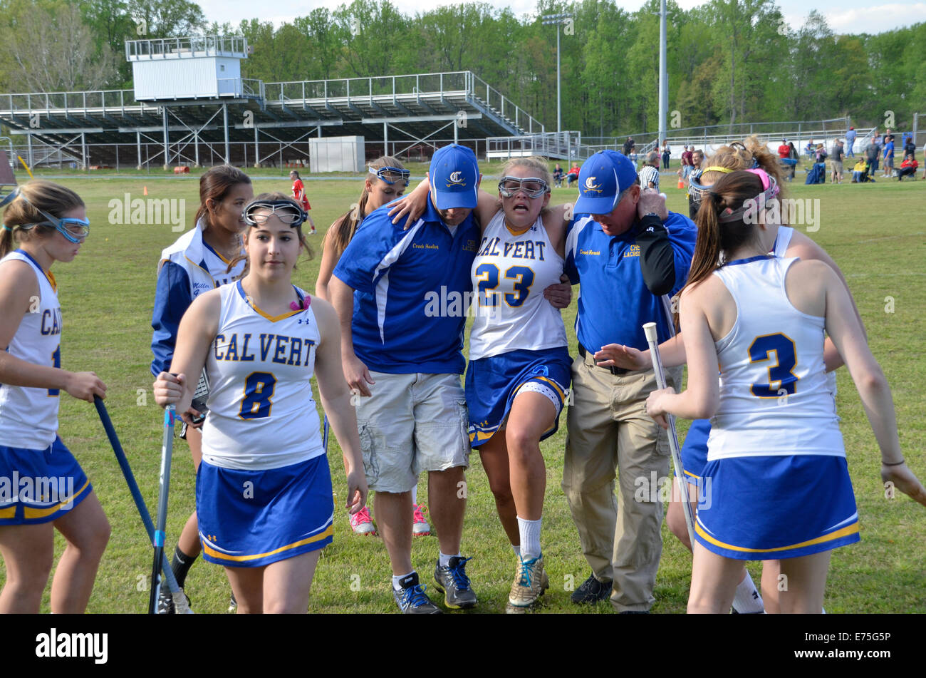 officials assist an injured female lacrosse player off the field  during a lacrosse game - Stock Image