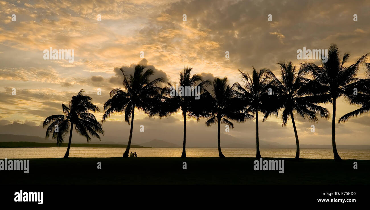 Tropical beach and coconut palms at sunset - Stock Image