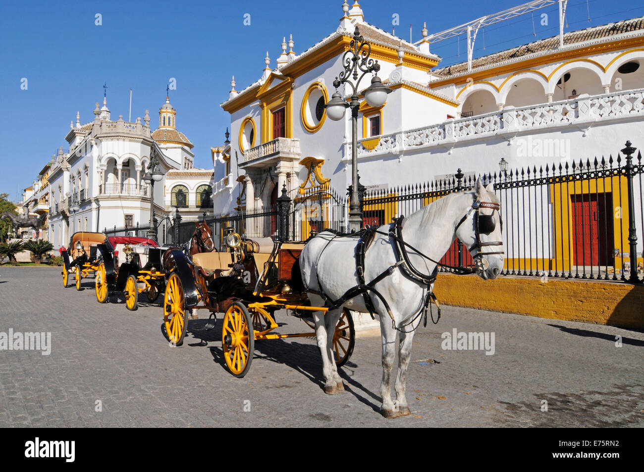 Horse-drawn carriages, Plaza de Toros de la Maestranza, bullring, museum, Seville, Andalusia, Spain - Stock Image